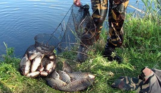 штраф за рыбалку в нерест на удочку